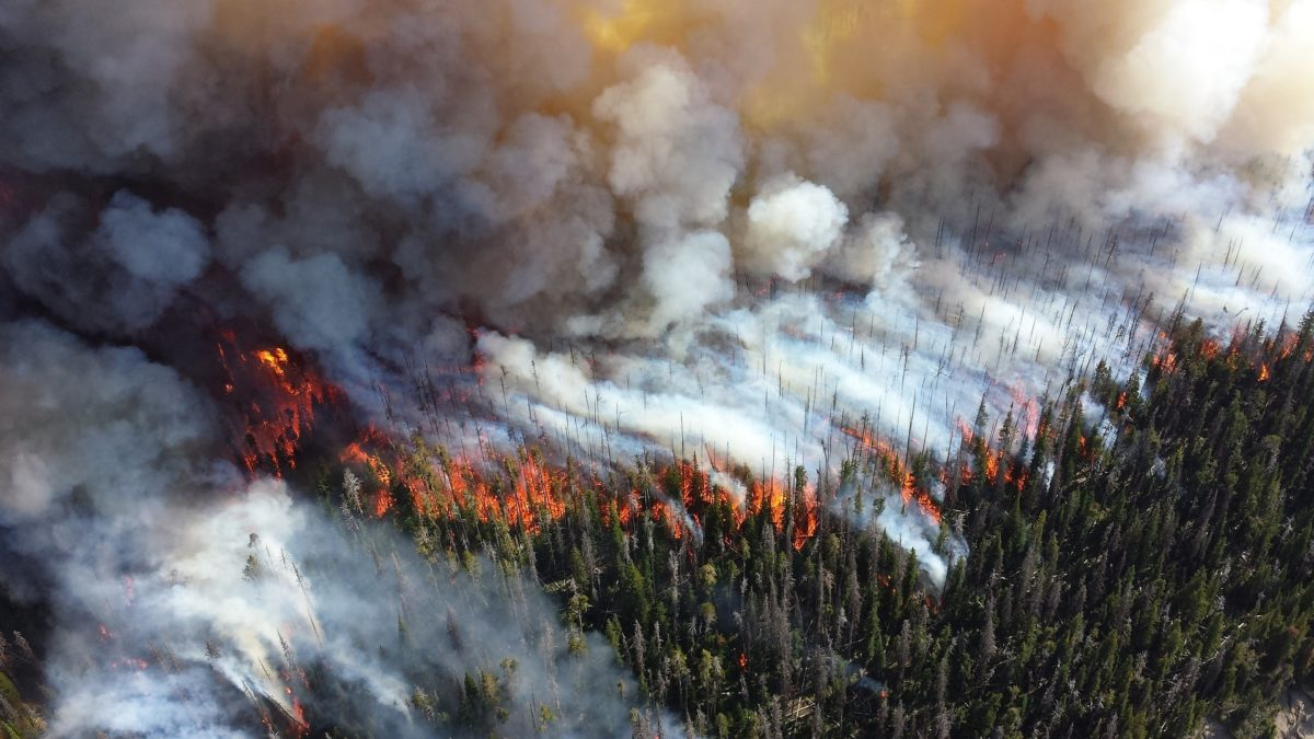 aerial shot of forest fire and how to deal with air pollution cycling